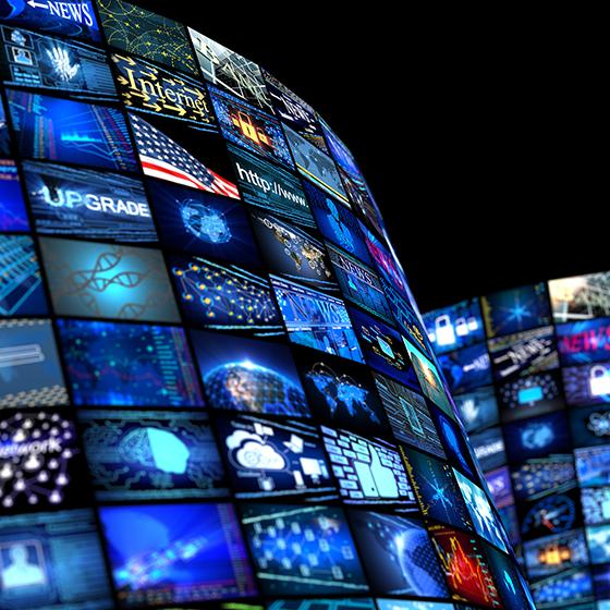 公安视频网络保护