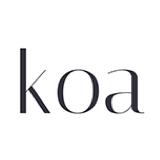 Koa 应用