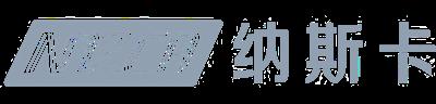 纳斯卡信息科技(上海)有限公司